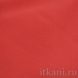 Ткань Трикотаж, цвет красный (0257)
