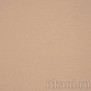 Ткань Трикотаж, цвет бежевый (0509)