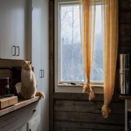Как правильно выбрать шторы на кухню?1